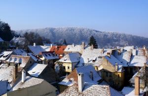 1291048_rooftops_.jpg